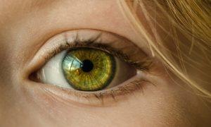 Les mouches devant les yeux ou taches noirespeuvent-elles nuire au bien-être?