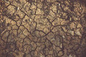 La gestion des boues urbaines, une problématique environnementale